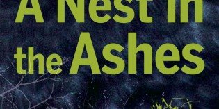 A Nest in the Ashes by Christine Goff
