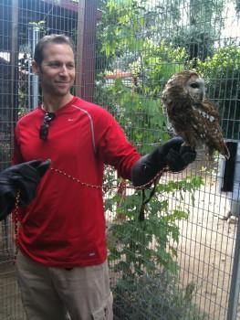 Gregg & owl
