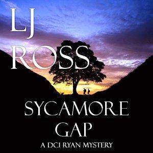 sycamore gap